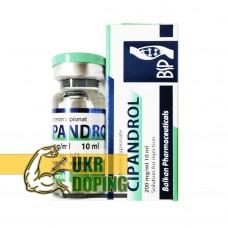 Testosterona C (Cipandrol-200)