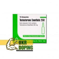 Тестостерон энантат 250 Иран купить в Украине курс